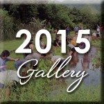 2015_Gallery