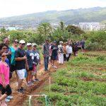 Class reps enjoy walking around the Otsuji Farm.